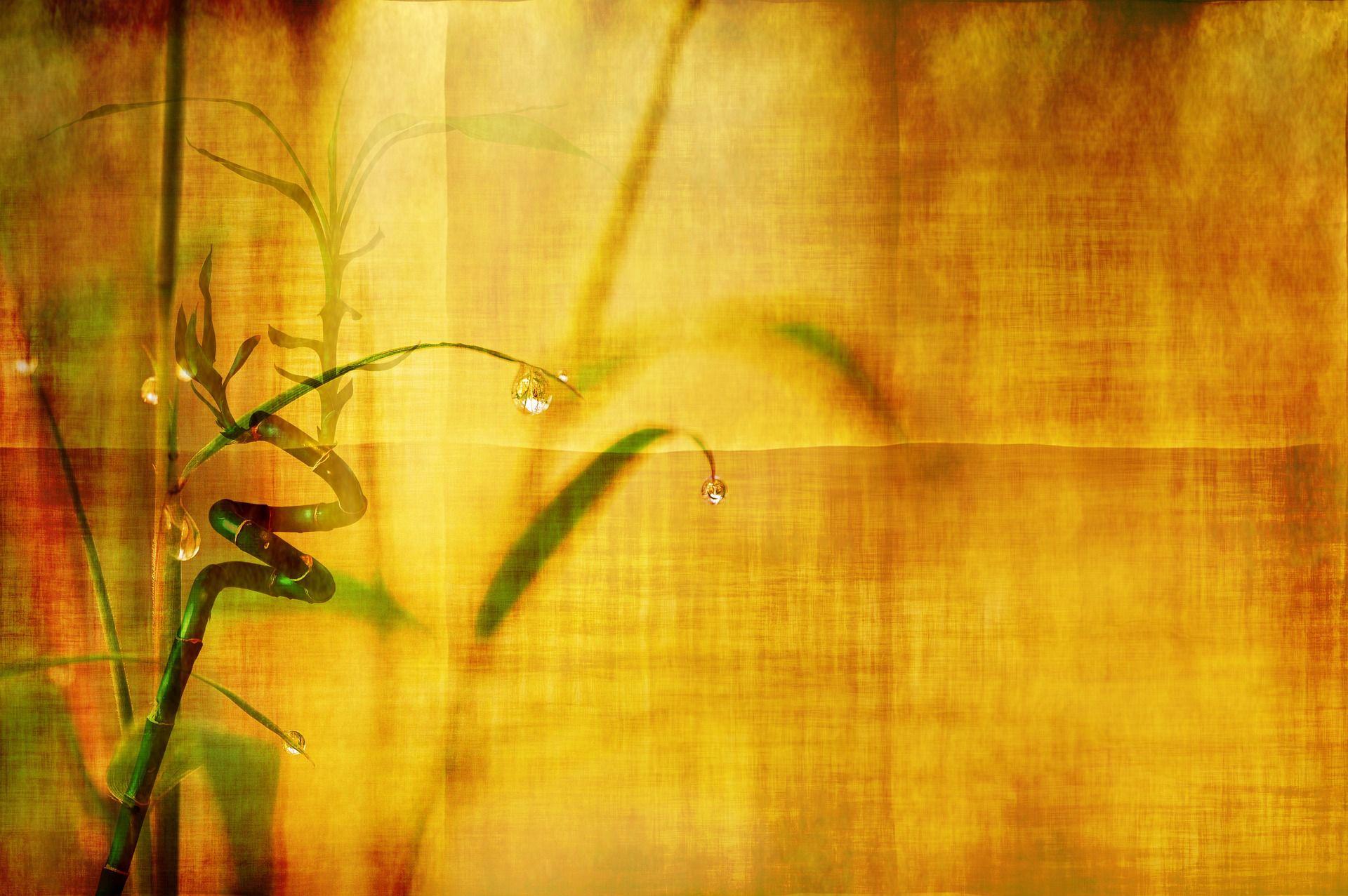 Вискоза или памук…а защо нe бамбук?